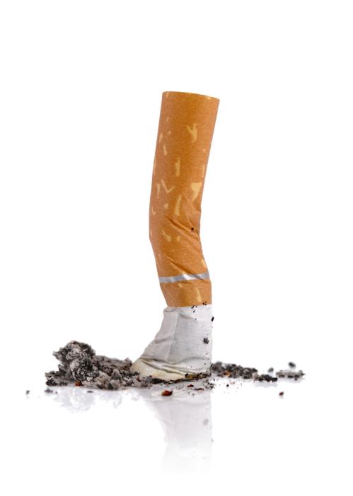 Des lièvres comme cesser de fumer pour 3
